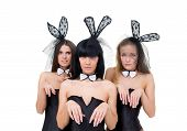 Sad Playgirls Wearing A Bunny Costumes