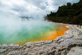 Champagne Pool In Rotorua, New Zealand At Sunrise poster