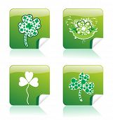 Shamrock vector illustration stickers