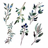 Watercolor Leaves Clipart poster