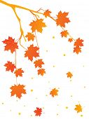 background with autumn tree branch, vector illustration