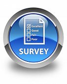 Survey (questionnaire Icon) Glossy Blue Round Button poster