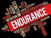Endurance Word Cloud poster