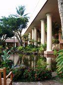Tropical Gardens At A Kauai Resort