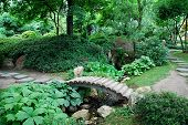 Japanese Garden With A Bridge