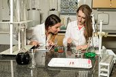 Team Of Two, Caucasian White, Female Laboratory Technicians In White Robes Working In Chemical Or Ph poster