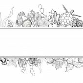 Line Art Border With Coral Reef Animals. Hand Painted Seaweeds, Shells, Seahorse, Turtle And Starfis poster