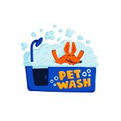 Pet Grooming Concept. Happy Dog Taking A Bath Full Of Soap Foam On White Background. Dog Care, Groom poster