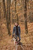 Hipster Stylish Guy Walking With Husky Dog In Autumn Forest. Pedigree Dog Concept. Best Friends. Unc poster