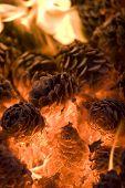 Glowing Hot Pinecones.