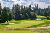 Golf course with gorgeous green and fantastic forest view. poster