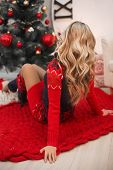 Healthy Hair. Curly Long Hairstyle. Back View Christmas Portrait Of Attractive Woman With Curly Hair poster