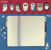 foto of screech-owl  - Owl Blog or Web Site  - JPG