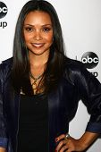LOS ANGELES - JAN 10:  Danielle Nicolet attends the ABC TCA Winter 2013 Party at Langham Huntington