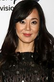 LOS ANGELES - JAN 10:  Yunjin Kim attends the ABC TCA Winter 2013 Party at Langham Huntington Hotel