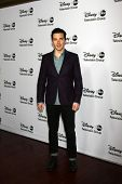 LOS ANGELES - JAN 10:  Ian Harding attends the ABC TCA Winter 2013 Party at Langham Huntington Hotel