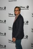LOS ANGELES - JAN 10:  Henry Czerny attends the ABC TCA Winter 2013 Party at Langham Huntington Hote