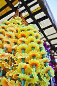 Flor de la maravilla plástico