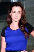 LOS ANGELES - JAN 12:  Linda Cardellini arrives at the 2013 Film Inependent nominees brunch at BOA S