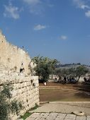 picture of aqsa  - View of Jerusalem with Al - JPG