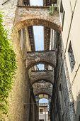 Sansepolcro (tuscany)