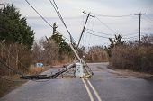 Downed Electrical Pole