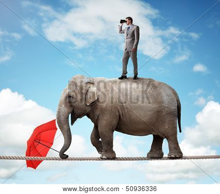 Businessman standing on top of elephant balancing on a tightrope looking through binoculars concept  poster