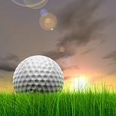 Green, fresh and natural 3d conceptual grass over sunset sky background with  golf ball at horizon,