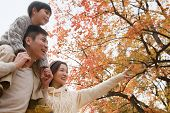 picture of mid autumn  - Family walking through the park in the autumn - JPG