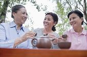 Group of mature women drinking Chinese tea in the park