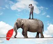 stock photo of directional  - Businessman standing on top of elephant balancing on a tightrope looking through binoculars concept for business vision - JPG