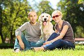 Smiling young couple hugging a labrador retreiver dog in a park