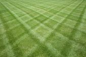 stock photo of manicured lawn  - Manicured lawn professionally cut in a diamond pattern - JPG