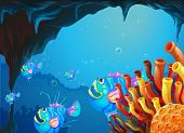 Illustration of a cave under the sea with a school of fish