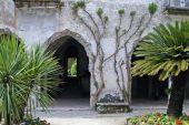 Ravello Garden