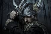 picture of viking  - Viking warrior - JPG