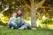 Full length of a mother and daughter reading a book at the park
