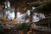 Raindrop in a puddle - colour.
