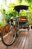 picture of tricycle  - Old Antique Tricycle in the garden  - JPG