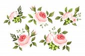 stock photo of rose  - Vector set of vintage pink roses isolated on a white background - JPG