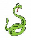 stock photo of anaconda  - cartoon snake - JPG