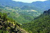 Passo Del Bracco (liguria, Italy)