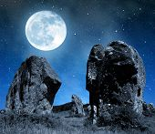 picture of megaliths  - Megalithic monuments menhirs in Carnac  - JPG