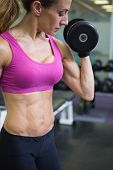 Fit young woman exercising with dumbbell in the gym