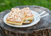 Pie With Ricotta And Nuts Over Rustic Background