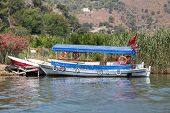 stock photo of dalyan  - Boat tour in Dalyan River Koycegiz Mugla Turkey - JPG