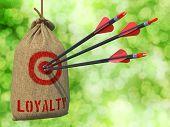 Loyalty - Arrows Hit in Red Target.