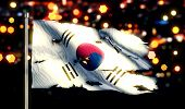 Korea National Flag Torn Burned War Freedom Night 3D