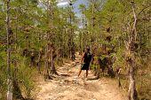Hiking the Everglades