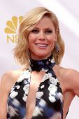 vLOS ANGELES - AUG 25:  Julie Bowen at the 2014 Primetime Emmy Awards - Arrivals at Nokia at LA Live on August 25, 2014 in Los Angeles, CA